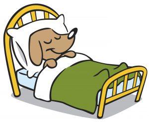 dog-boarding-kennels-bridgend-dog-kennel-facilities-fbxVX0-clipart